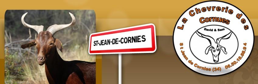 http://saintjeandecornies.free.fr/images/david%20et%20sam.jpg